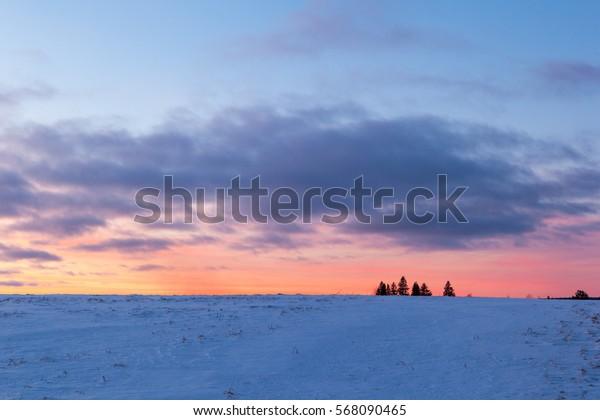 Sunset on a snowy field. Winter landscape.