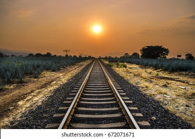 Sunset on the train tracks in Tequila