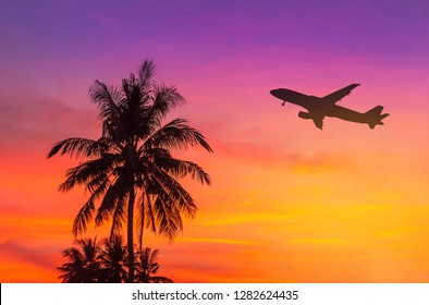 sunset on tropical beach with coconut palm trees during silhouette airplane flying take off over