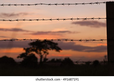 Sunset at the other side of the fence