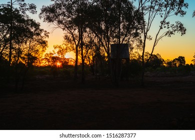 sunset in outback Australia. silhouette of gum trees and water tank.