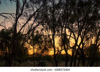 Sunset in the outback of the Northern Territory in Australia