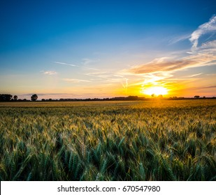 Sunset over Agricultural Cereal field in Suffolk England