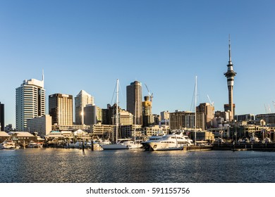 Sunset over Auckland skyline with the sky tower and the Viaduct marina, with many luxurious yacht, in New Zealand largest city.