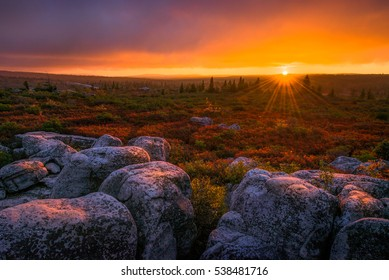 Sunset over Bear Rocks in West Virginia's Dolly Sods Wilderness