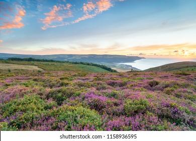 Sunset over Bossington Hill above Minehead on the Somerset coast