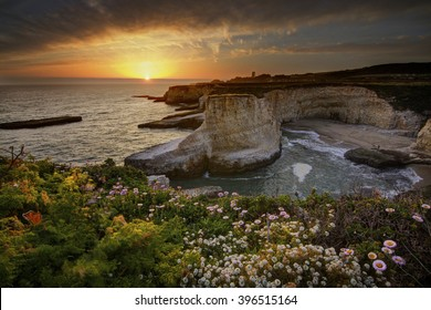 Sunset over davenport with ocean view and wildflowers
