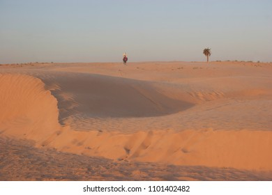 sunset over a desert landscape with sand dunes, palmtrees and wind-shaped ridges in the sand, berber horsemen walking away