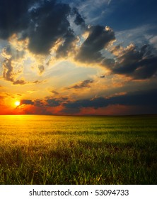 Sunset over field with grass with big fluffy clouds