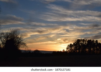 Sunset over the field and trees