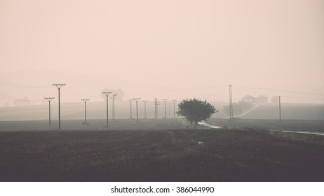 sunset over the fields in fog in summer with electricity poles - vintage effect