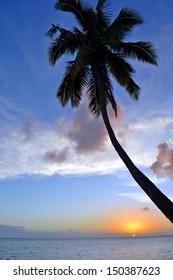 sunset over the Fiji beach