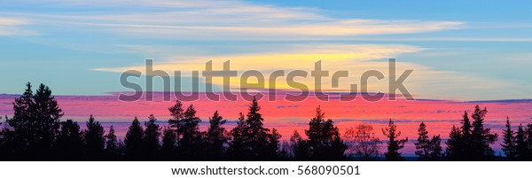 Sunset over the forest. Panorama