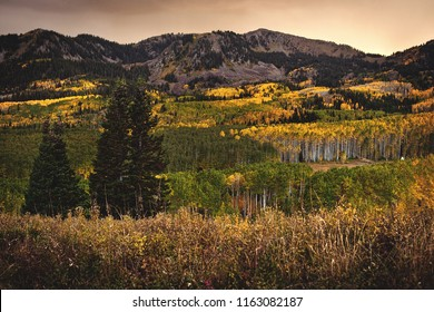 Sunset over Guardsman Pass and it's changing aspen fall colors, just above Park City, Utah.