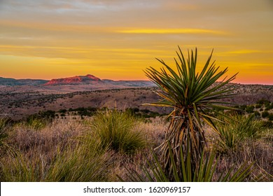 Sunset over high desert mountains in Far West Texas with desert foliage in the foreground.