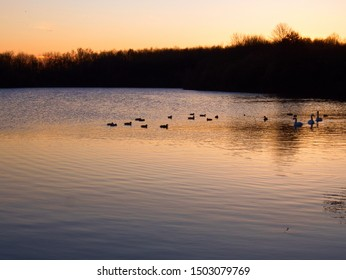 Sunset over a lake with ducks