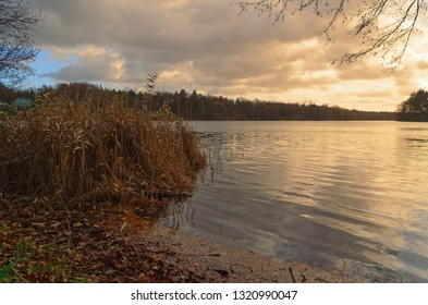 Sunset over lake with a reed in foreground. Siek county in north Germany