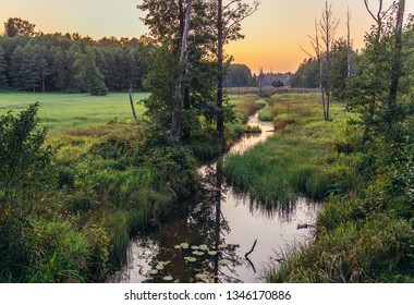 Sunset over Lutownia small river in Bialowieza Forest National Park in Podlasie region of Poland