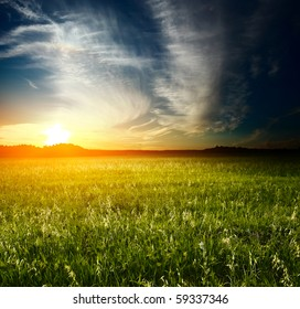 Sunset over meadow with wild herbs