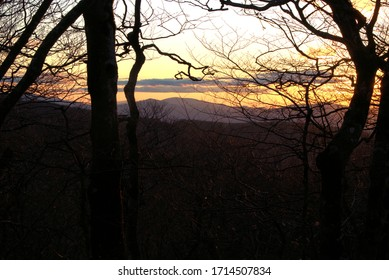 Sunset over mountains through trees