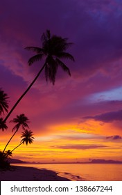 Sunset over the ocean with tropical palm trees silhouette, vertical panorama