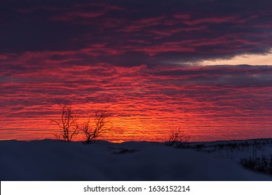 Sunset over an open landscape. In the foreground is a blurry snowbank, and the clouds are streaky across the sky