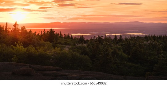 Sunset over the pine forest in Acadia National Park