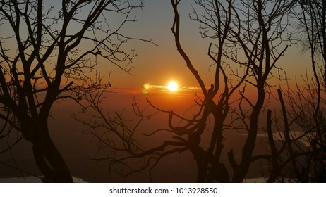 sunset over the Po valley, Lombardy, Italy and branches of trees