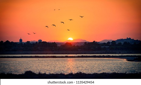 Sunset over the pond with flamingos in the sky. Cagliari skyline at sunset from the pond of Molentargius with flamingos in the sky.