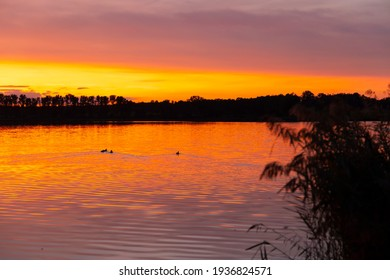 Sunset over the pond Rezabinec near Pisek town, Southern Bohemia, Czech Republic - Shutterstock ID 1936824571