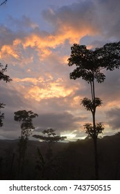 Sunset over rain forest in Mastatal Costa Rica in the summer