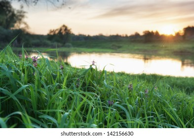 Sunset over river in a Russia. Photo with small depth of field, and focus on a grass