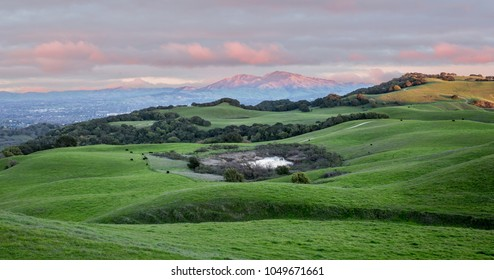 Sunset over Rolling Grassy Hills and Mount Diablo in Northern California. Views from Briones Regional Park, Contra Costa County, California, USA.