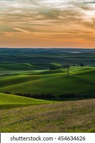 Sunset over the rolling plains of wheat crops in Idaho
