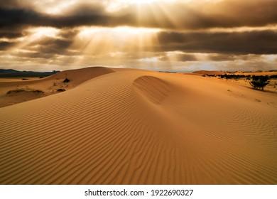 Sunset over the sand dunes in the desert. Arid landscape of the Sahara desert