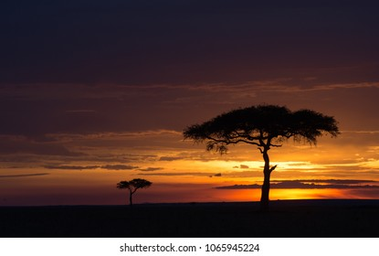 Sunset over a savannah in Masai Mara Game Reserve, Kenya.