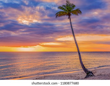 sunset over the sea of the Caribbean island of Santo domingo on the dream beaches of Bayahibe