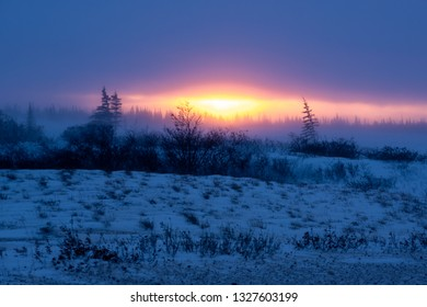 Sunset over a snowy landscape