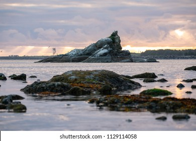Sunset over Tillamook bay in Oregon. Rock formation sticking out of the water with Cormorants and Seagulls nesting on it. Sun rays shine through clouds in golden light.