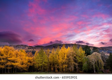 Sunset over Tollymore Forest and the Mourne Mountains
