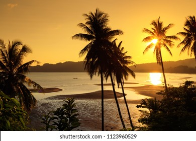 Sunset over the tropical beach with coconut palm and boat at Chumphon , Thailand . silhouettes of palm trees and amazing cloudy sky on sunset at tropical Beach with Lens Flare
