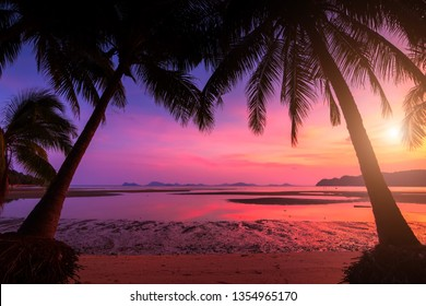 Sunset over the tropical beach with coconut palm and boat at Chumphon , Thailand. silhouettes of palm trees and amazing cloudy sky on sunset at tropical Beach. Koh tao is a paradise island in Thailand