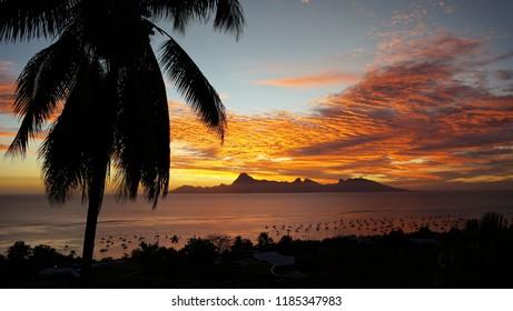 Sunset over tropical island and marina