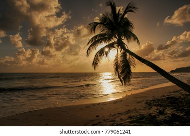 sunset over tropical sea
