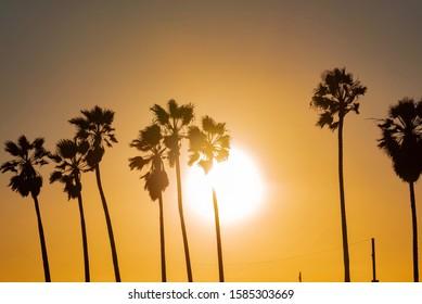 sunset over Venice Beach city on the beach of California