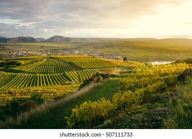 Sunset over vineyards near Göttweig Abbey in Krems, Austria