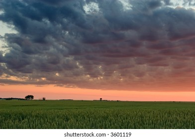 Sunset over wheat field, Gilbert Plains, Manitoba, Canada