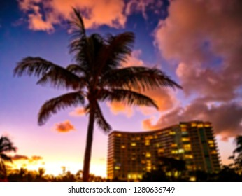 Sunset with a palm tree and a building of vacation concept as a blurred background.