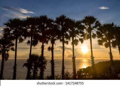 Sunset with palm tree at Promthep Cape Viewpoint, Phuket island, Thailand