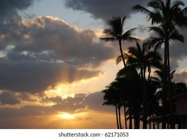Sunset and Palm Trees on Waikiki Beach, Oahu, HI